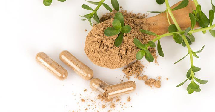 6 Natural Herbs To Boost Memory And Brain Function In Kids