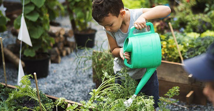 Top 20 Good Habits To Teach Your Kids