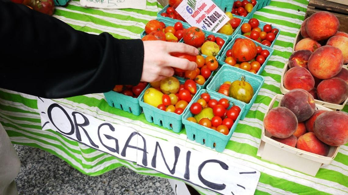 Reasons Why Organic Food Is Good For Your Child