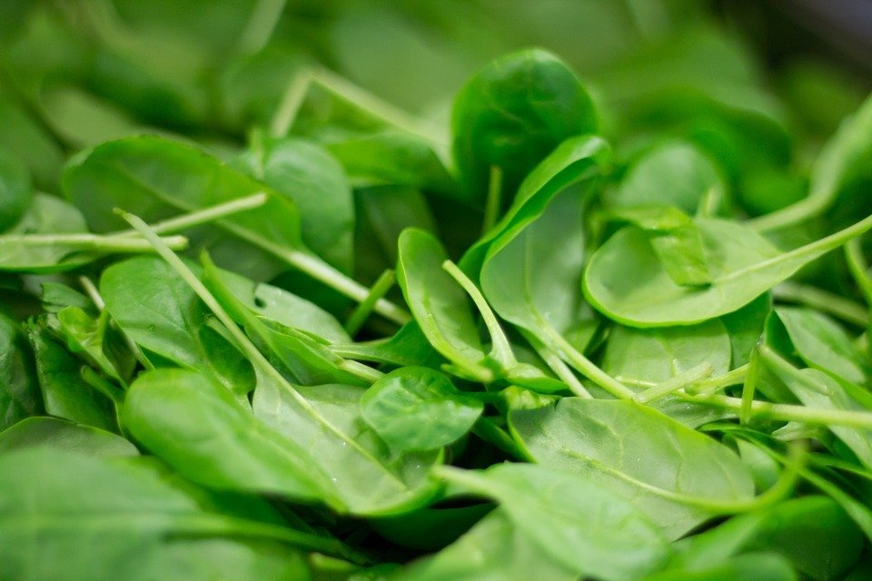 Anti-Ageing Diet: Eat These 7 Foods For A Younger And Wrinkle Free Skin