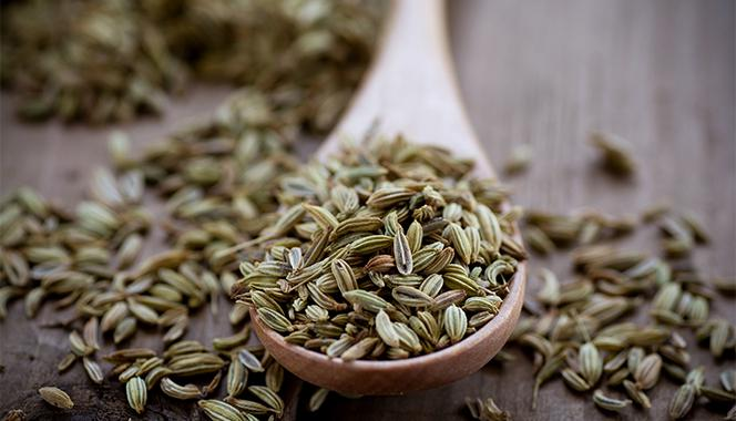 6 health benefits of fennel seeds for babies, its use for treating constipation, respiratory problems and more