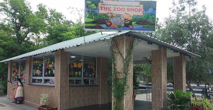Virtual Zoo Tour For Kids - World Wildlife Day