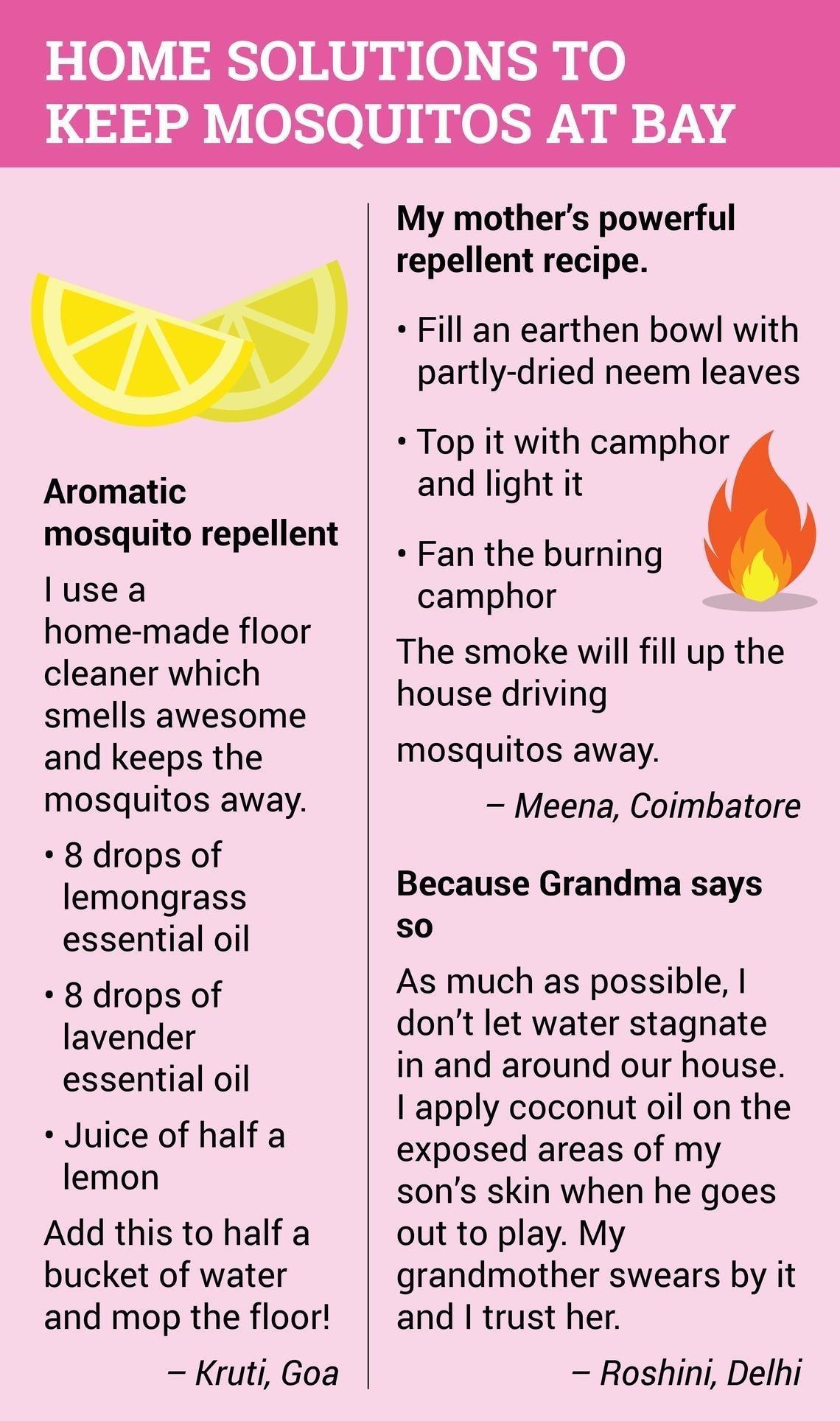 Know Mosquito, No Malaria