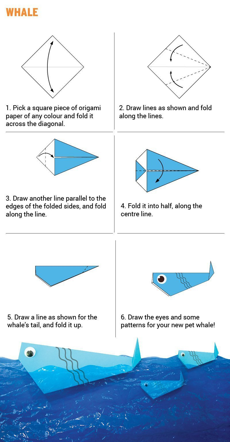 Origami For Kindergarten (2 To 4 Year Olds)
