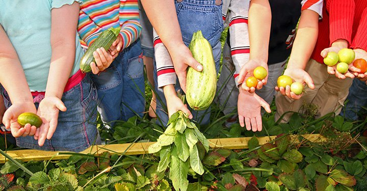 How To Wash Fruits And Vegetables During COVID-19
