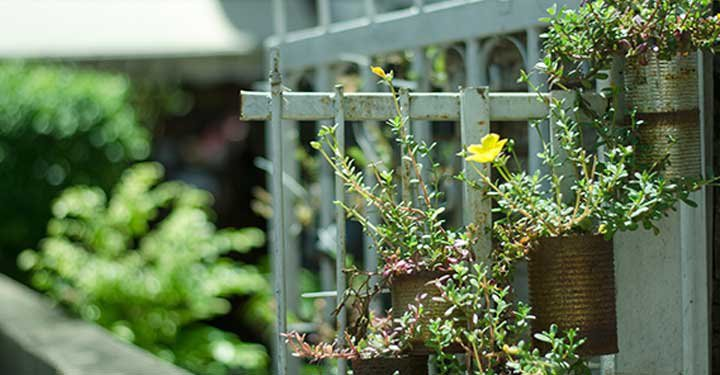 9 Fun Gardening Ideas For Kids