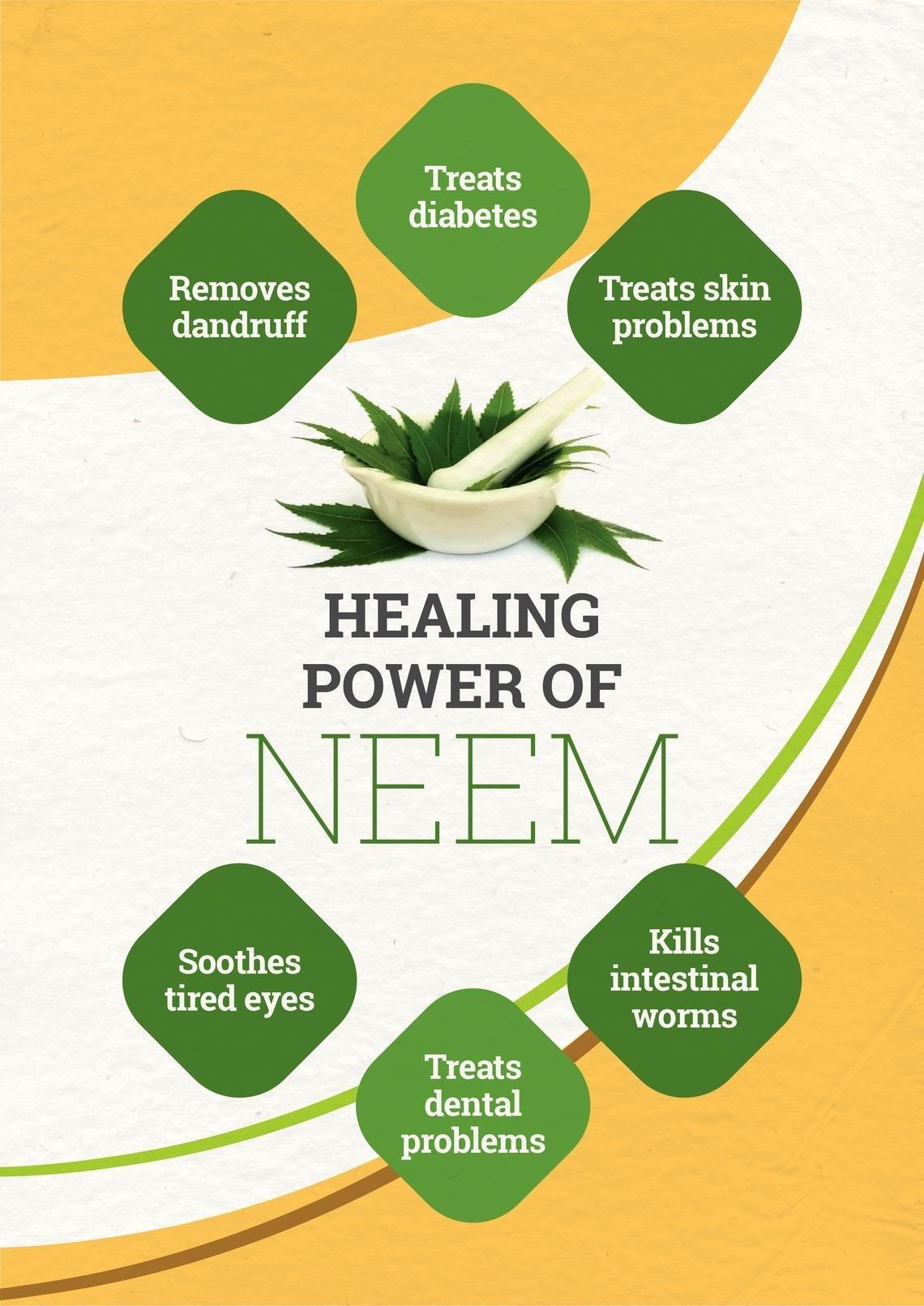 Top 10 Benefits Of Neem Leaves