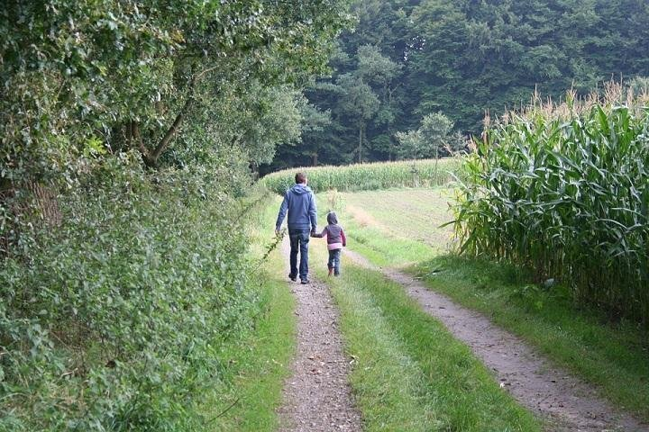 Bonding Ideas For Fathers of Young Children