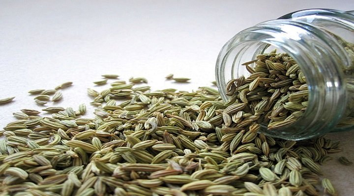 Fennel Seeds: 6 Health Benefits For Babies