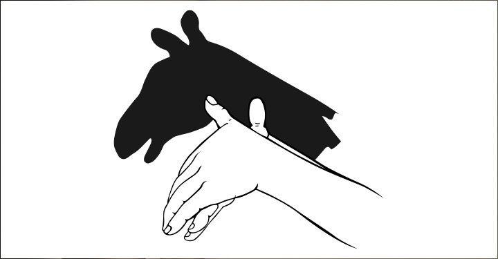 How To Make Animal Hand Shadows