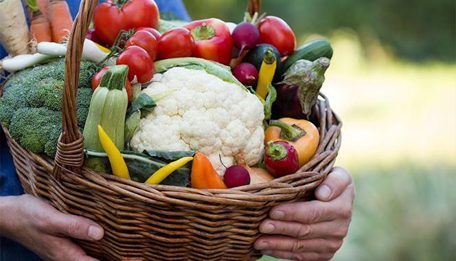 Choosing Organic Foods To Promote Healthy Living