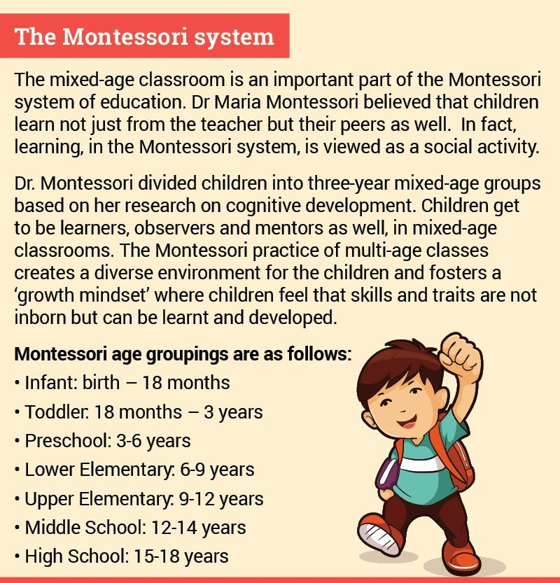 The power of mixed-age learning