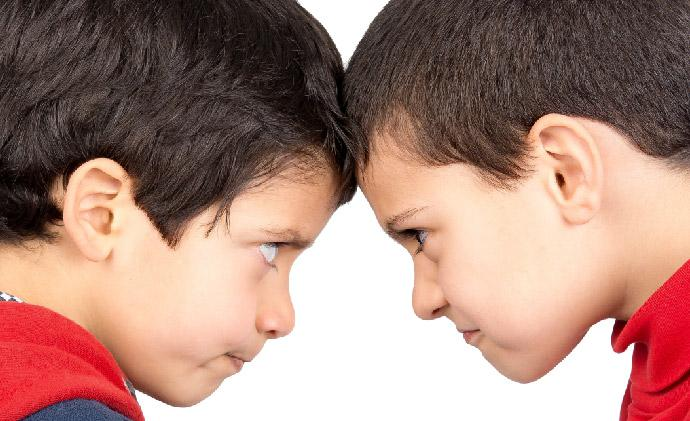 Early Warning Signs of Violent Behavior in Children.