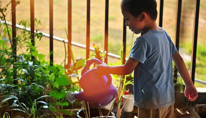 Is gardening your stress buster? Here are 10 tips on growing a home garden with your children
