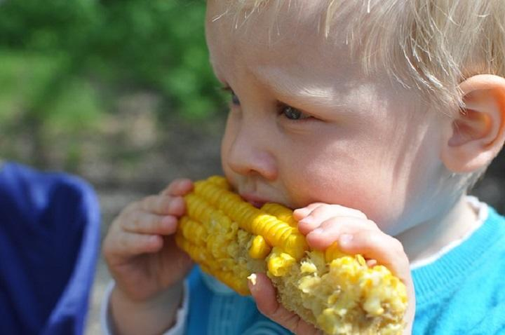 Toddler Mealtime: 5 Tips to Make Your Toddler Eat
